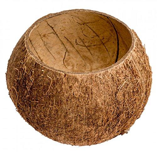 NaDeco Kokos Becher | Kokosnuss Schale | Kokosbecher | echte Deko Kokosnuss | Kokosnussschalen | Deko Kokosnuss | Beach Party | Beach Club Deko